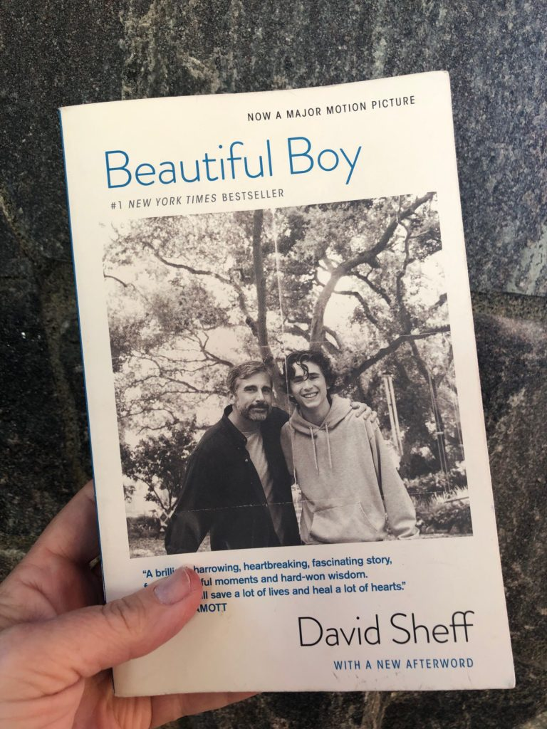 Beautiful Boy Book